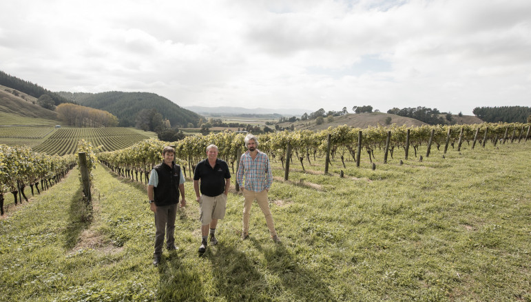 Winemakers McDiarmid Hill Vineyard Gisborne